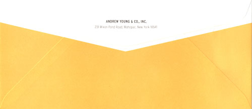 Andrew Young & Co logo