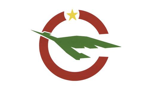 Cameroon Air logo