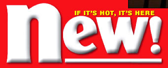 New Magazine logo