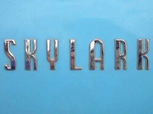 Skylark logotype
