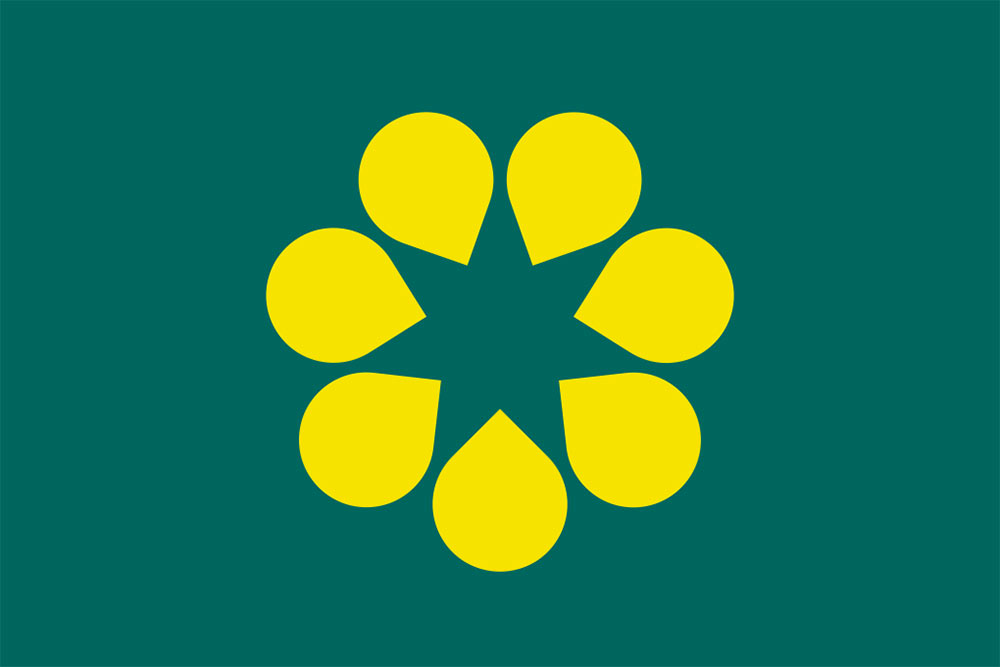 Golden Wattle flag Australia