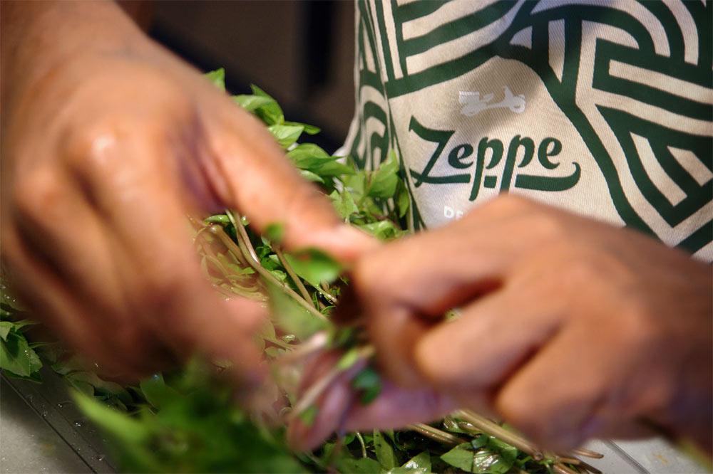 Zeppe logo