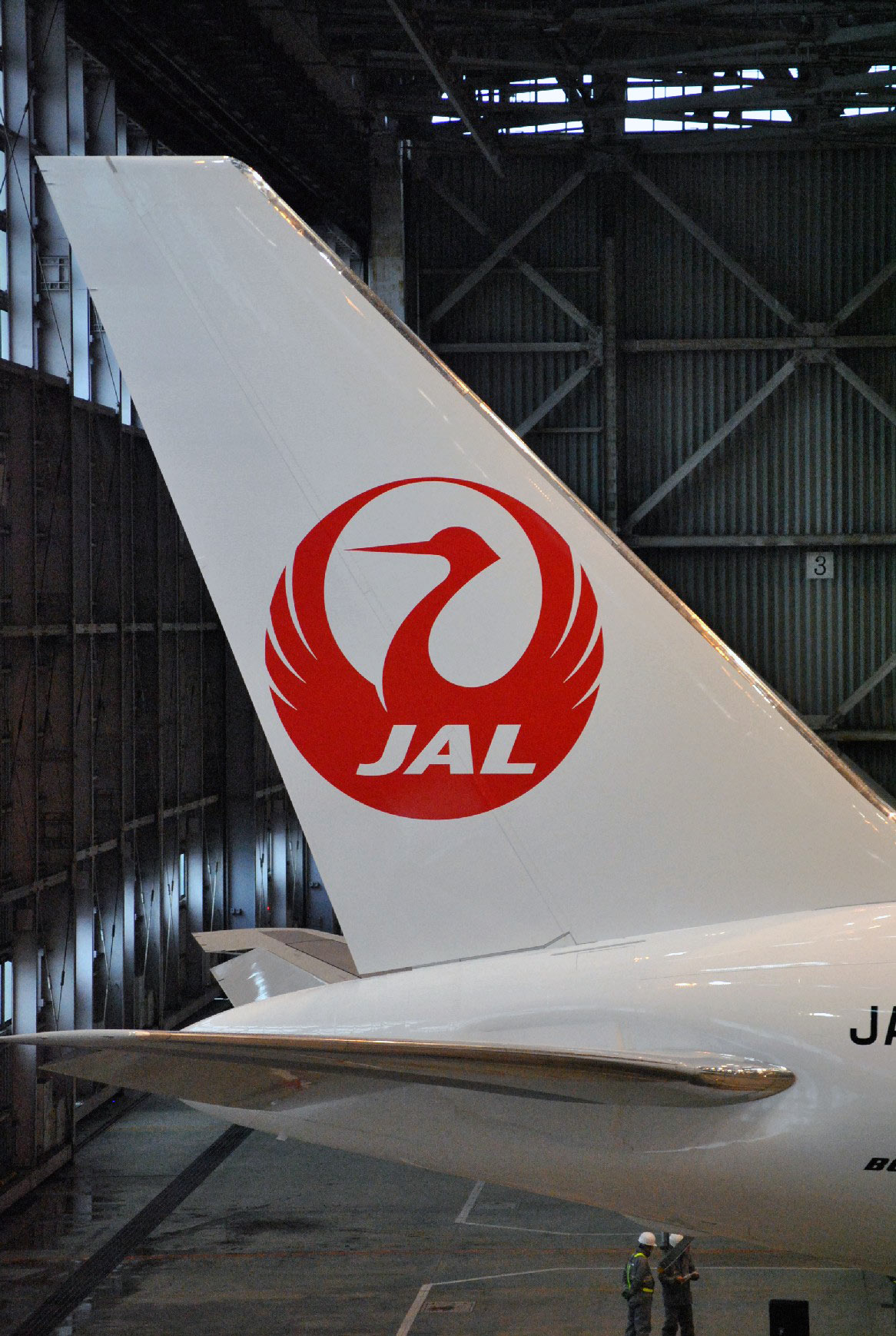 JAL crane logo on tail