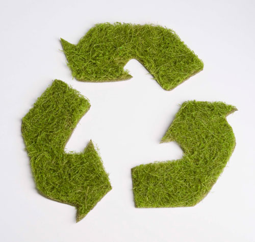 Recycle symbol grass