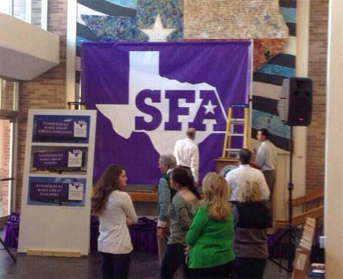 New SFA logo axed